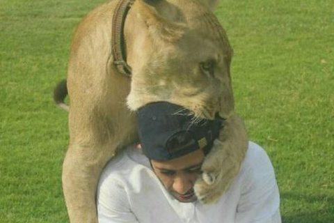 félidés à Dubaï