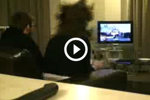 hystérie aigue devant un jeu vidéo