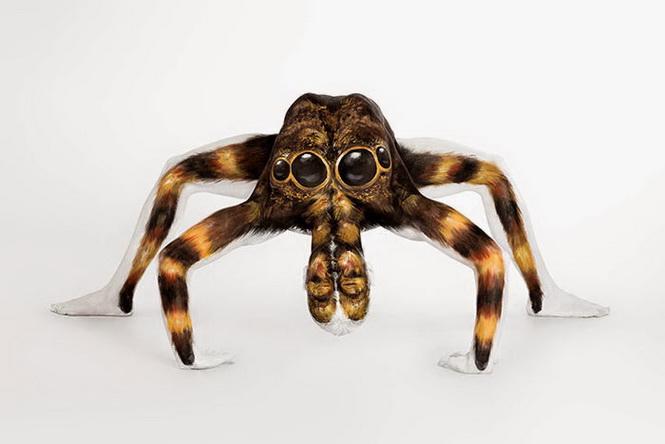 body-painting araignée